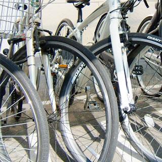 大量の自転車
